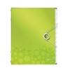 Triediaca kniha 12 oddielov WOW metalická zelená