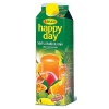 Džús HAPPY DAY multivitamín 1l