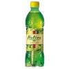 Nativa Zelený čaj s gingkom 0,5l